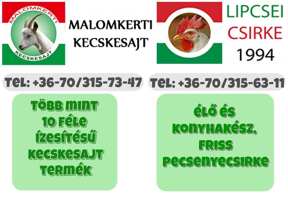 BÉKÉSCSABAINFO – Malomkerti Kecskesajt és Lipcsei Csirke