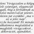 KISKUNFÉLEGYHÁZAINFÓ – HENI VIRÁGSZALON
